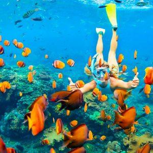 Private Snorkeling Trip