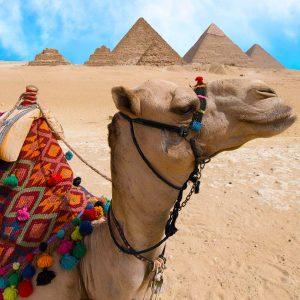 2 Days Soma Bay to Cairo Tour